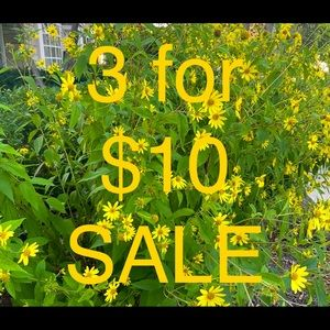 💚 3 FOR $10 SALE 💚